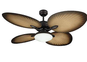 OASIS CEILING FAN Lights Direct